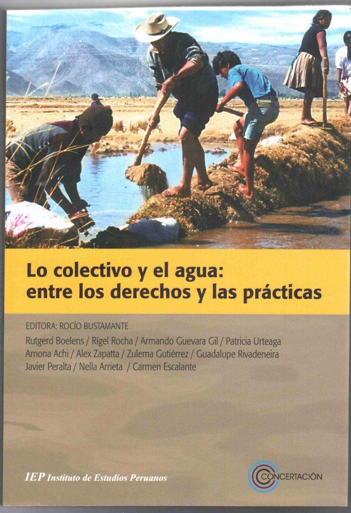 Lo colectivo y el agua: entre los derechos y las prácticas